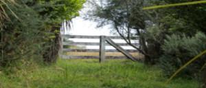 gate-view